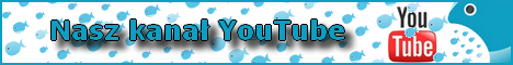 Kanał YT