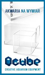 Aqua Technology